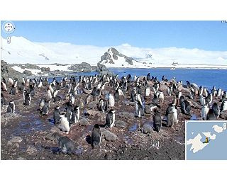Google南极拍街景